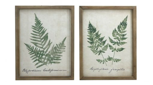Set Of 2 Fern Canvas Pictures Plant Home Garden Dector Flower Wooden Frame